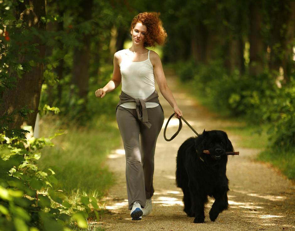Caminando con el perro