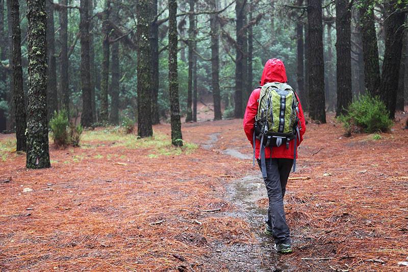 Caminar sobre terreno húmedo